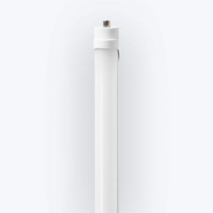 DuraGem™ LED T8 8-FT RA8 Lamp (2)